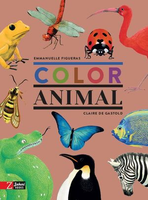 COLOR ANIMAL
