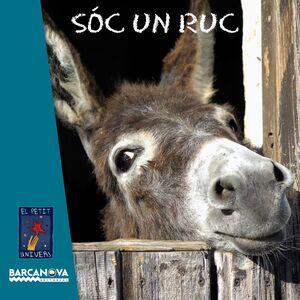 SOC UN RUC