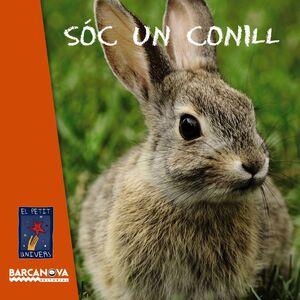 SOC UN CONILL